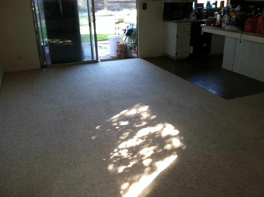 Low Cost Professional Carpet Cleaning Service Chino Carpet Cleaners Near Me