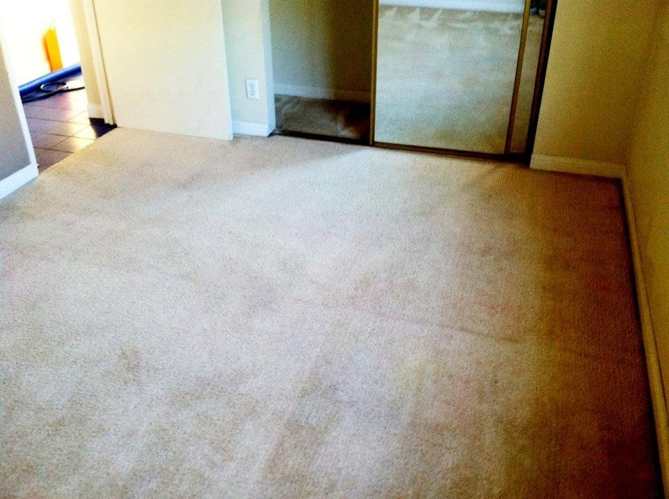 Most Effective Carpet Cleaning D.I.Y. Tips in Chino Carpet Cleaners
