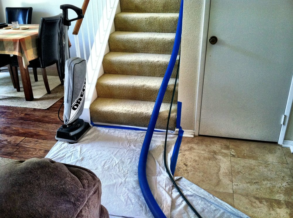 Stain Removal Tips Carpet Cleaning Easy D.I.Y. Cleaning Tips in Chino